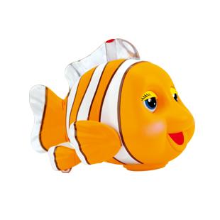 机灵小丑鱼